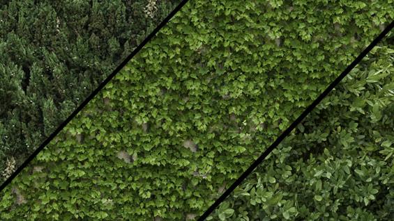vines-Textures